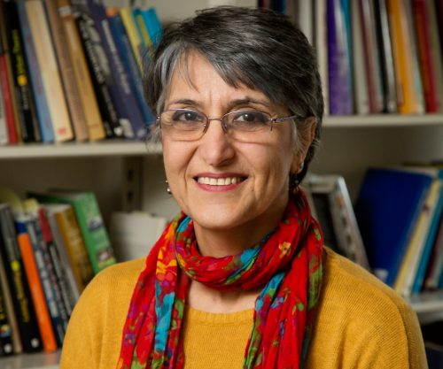 Professor Faranak Miraftab