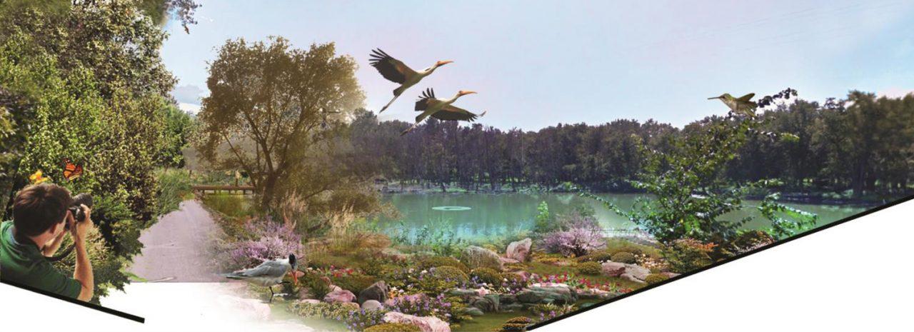 Student work: nature image after conservation