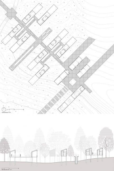 Building plans and sections