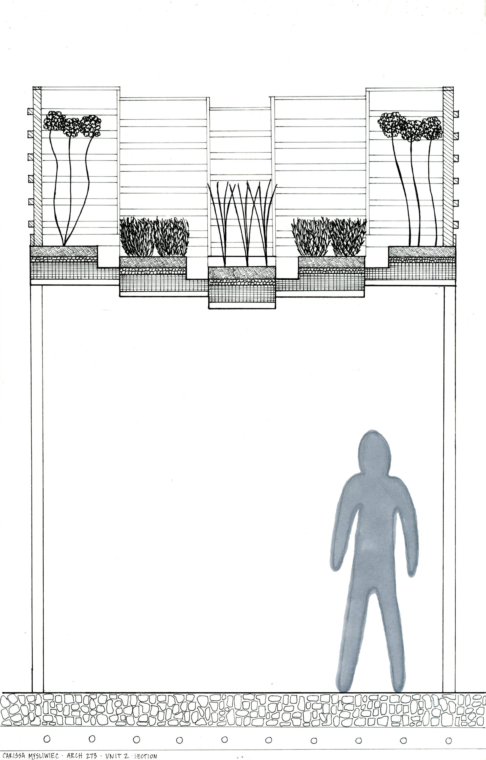 Section drawing of green roof