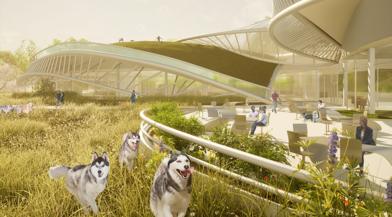 Exterior rendering with landscape and dogs