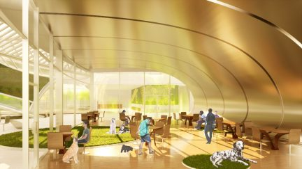 Interior view of dog café overlooking Chicago River