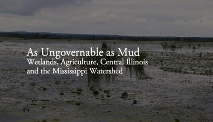 As Ungovernable as Mud graphic