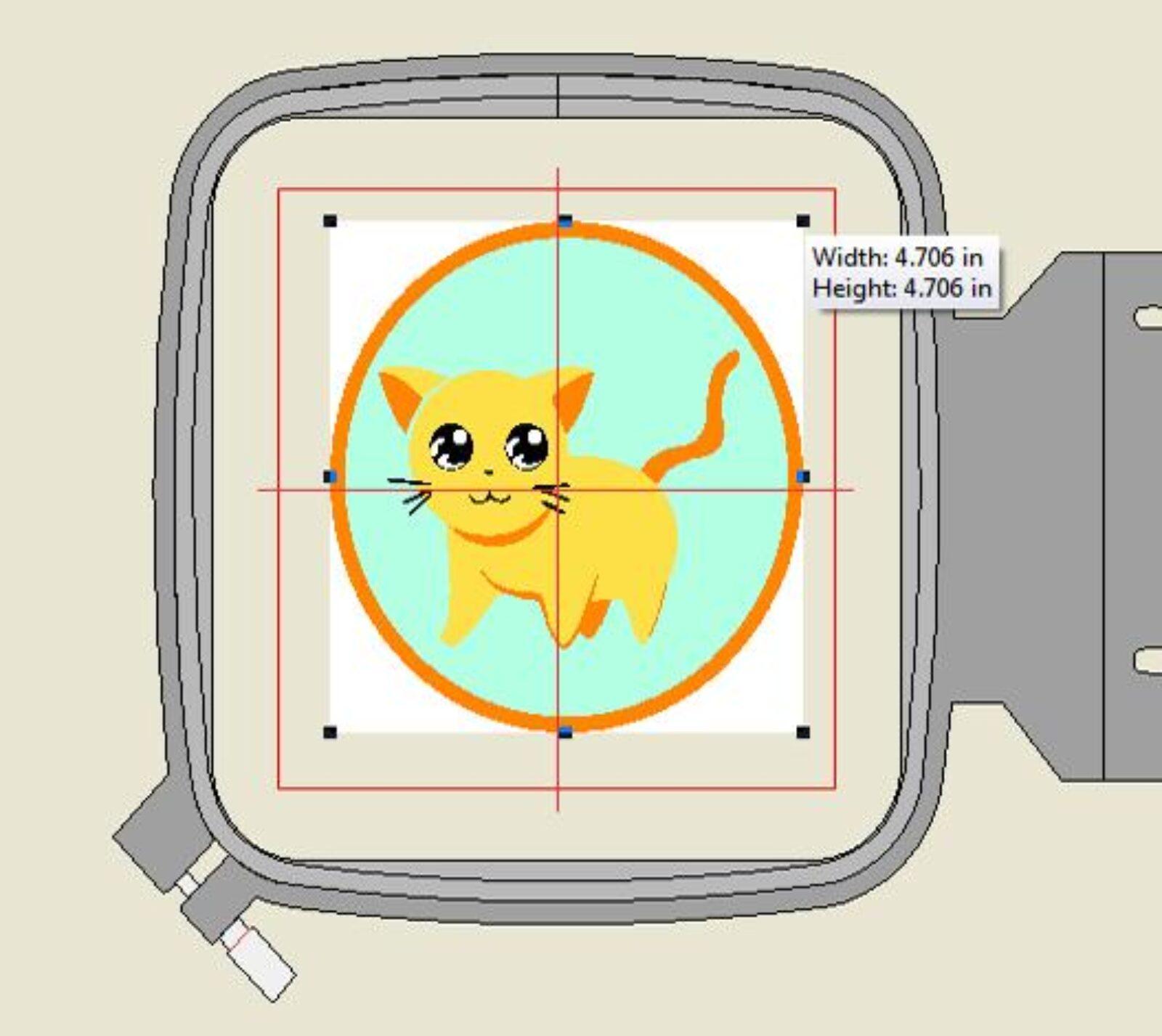 Cat in hoop