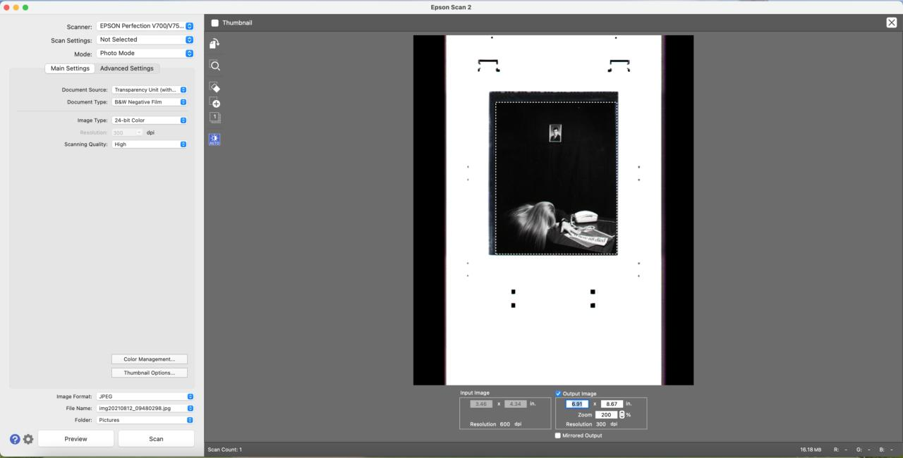 scanning software interface with a film negative in the preview window