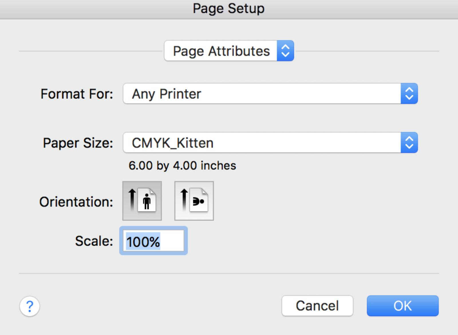 Confirm Paper Size and Settings