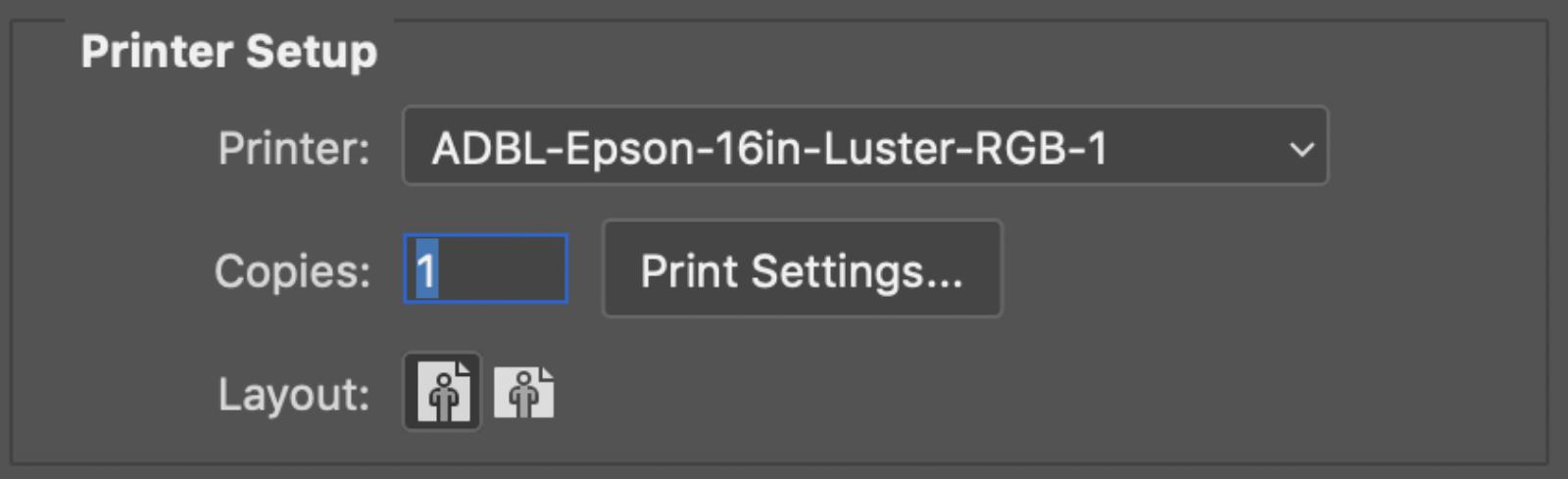 Layout Options and Print Settings Button